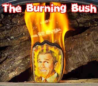 burningbush.jpg